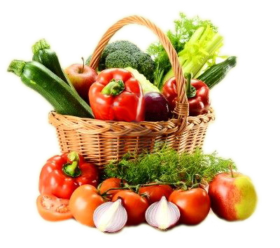 The Benefits of Vegetarian Dog Food