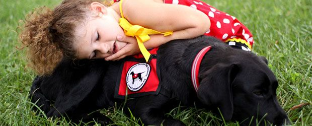 service dogs for children with autism