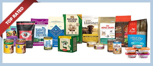 Best Rated Healthiest Dog Food