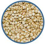 Carbohydrates-Quinoa