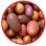 Potatoes are a common filler in foods considered to be hypoallergenic or more like the dog's natural ancestral diet