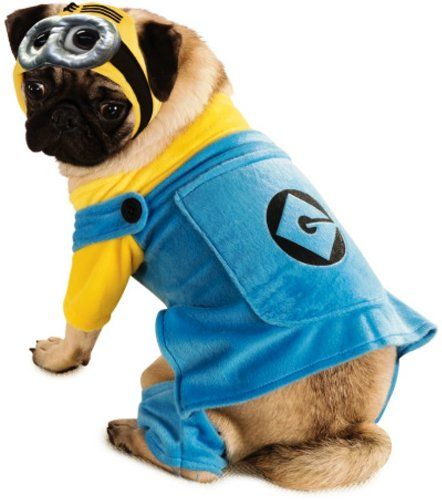 Despicable Me 2 Minion Pet Costume