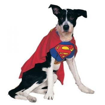 Rubies Costume DC Heroes and Villains Collection Superman Pet Costume
