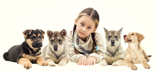Small Dog Breeds for Babies & Kids