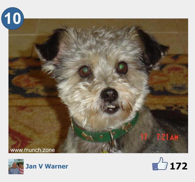 10 - Jan V Warner
