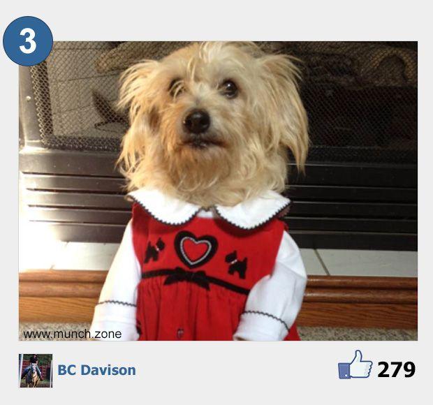 3 - BC Davison