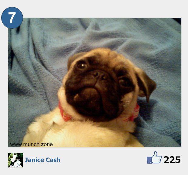 7 - Janice Cash