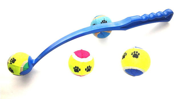 Best Fetch Ball Launcher Toy for Dogs
