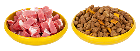 Essential Nutrients for your Dog's Health