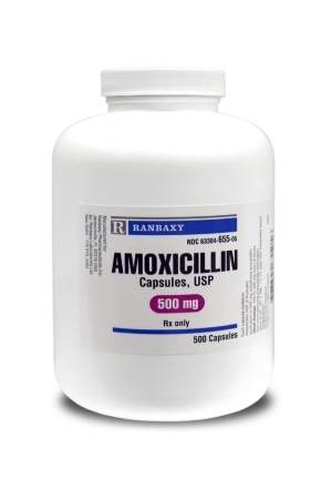 Amoxicillin for Cats
