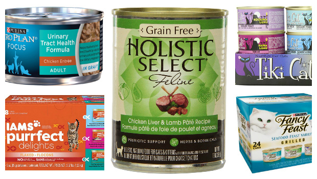 Best Canned Cat Food