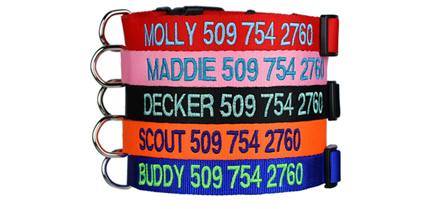 Personalized Custom Embroidered Dog Collars