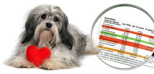 Best Diabetic Dog Food